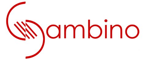 Gambino Parrucchiere dal 1978